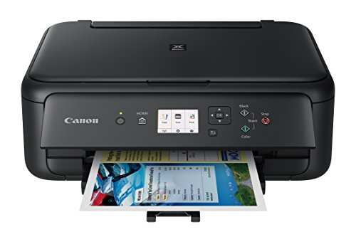 Canon TS5120 Wireless All-In-One Printer with Scanner and Copier: Mobile and Tablet Printing, with...