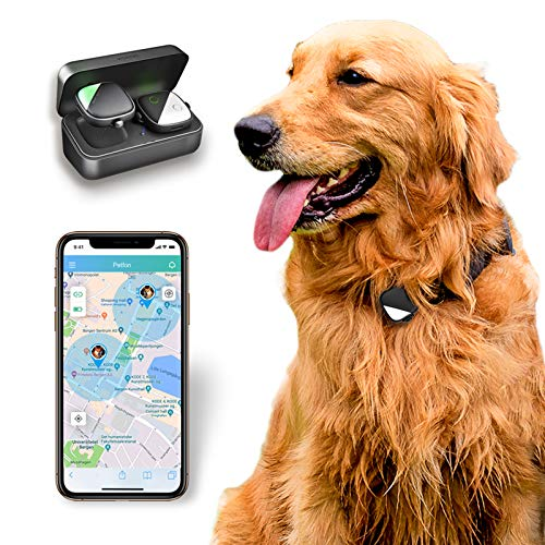 PetFon Pet GPS Tracker, No Monthly Fee, Real-Time Tracking Collar Device, APP Control for Dogs and Pets...